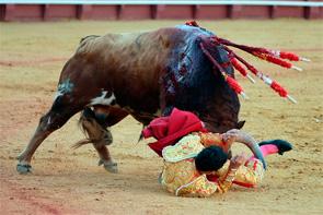 Cornada en la axila para Gómez del Pilar y posible rotura de costilla para Pascual Javier